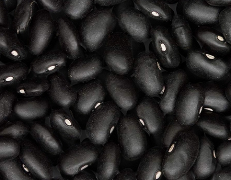 poroto-negro_OK1.jpg
